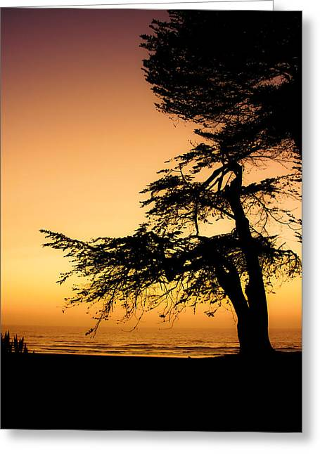 Trinidad Beach Sunset Greeting Cards - Pacific Greeting Card by Mark Alder
