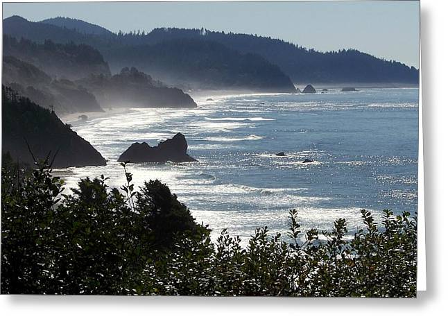 Oregon Coast Greeting Cards - Pacific Mist Greeting Card by Karen Wiles