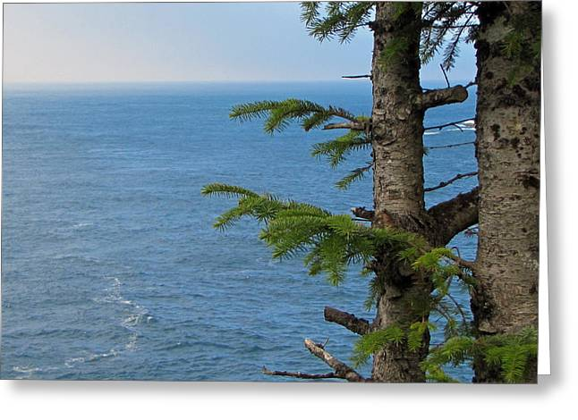 Cape Flattery Greeting Cards - Pacific Ocean Greeting Card by Roger Reeves  and Terrie Heslop