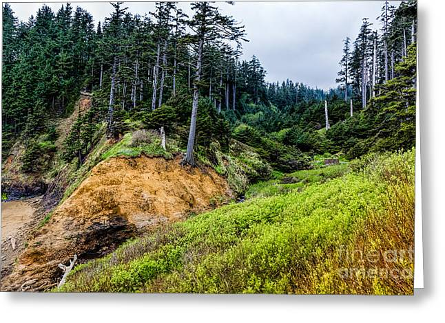 Oregon Coast Greeting Cards - Pacific Overlook Greeting Card by Jon Burch Photography