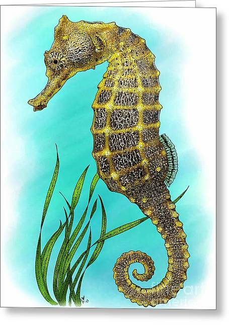 Sea Horse Greeting Cards - Pacific Seahorse Greeting Card by Roger Hall