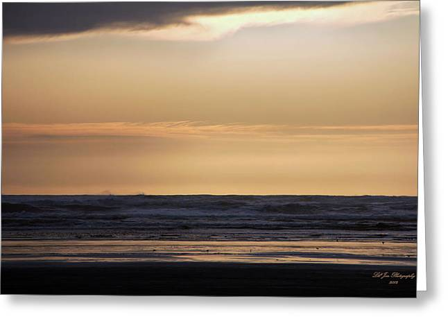 Beach At Night Greeting Cards - Pacific Sunset Greeting Card by Jeanette C Landstrom