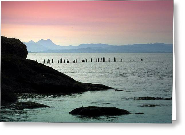 Best Ocean Photography Greeting Cards - Pacific Vista II Greeting Card by Joyce Dickens