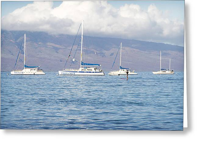 Lahaina Greeting Cards - Paddle Surf 1 Greeting Card by Jessica Velasco