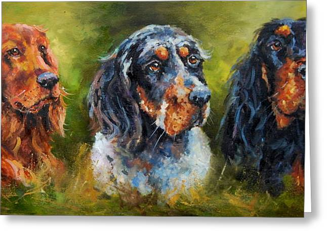 Gordon Setter Art Greeting Cards - Paddy the Irishman Paddythe Englishman and Paddy the Scotsman Greeting Card by Jacinta Crowley-Long