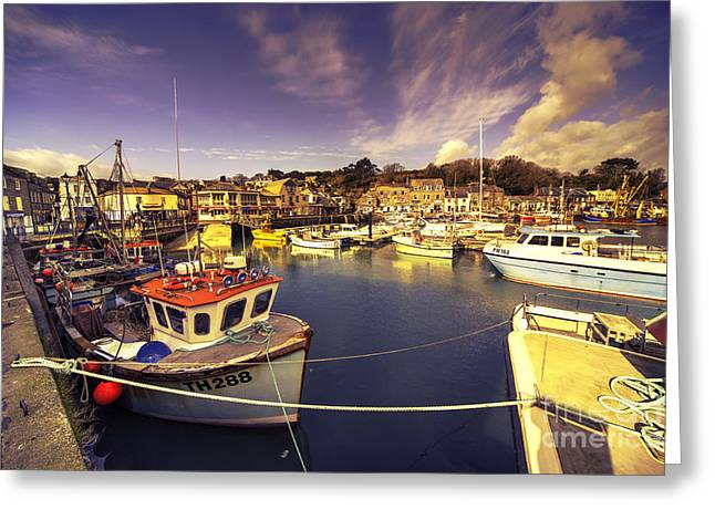 Stein Greeting Cards - Padstow Vista  Greeting Card by Rob Hawkins