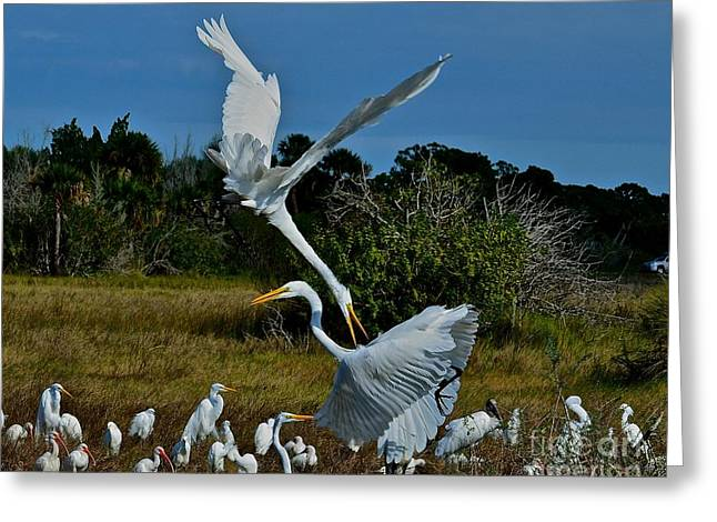 Wildlife Refuge. Greeting Cards - Pain in the Neck Greeting Card by AnnaJo Vahle