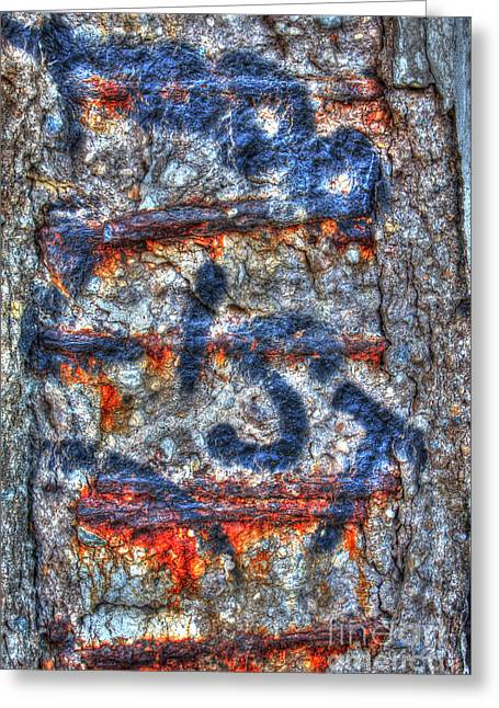Paint And Rust 25 Greeting Card by Jim Wright