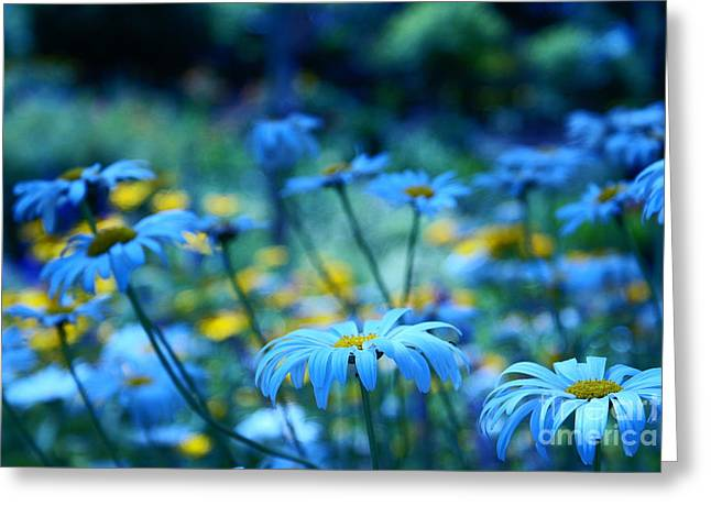 Aimelle Photography Greeting Cards - Paint Me Blue Greeting Card by Aimelle