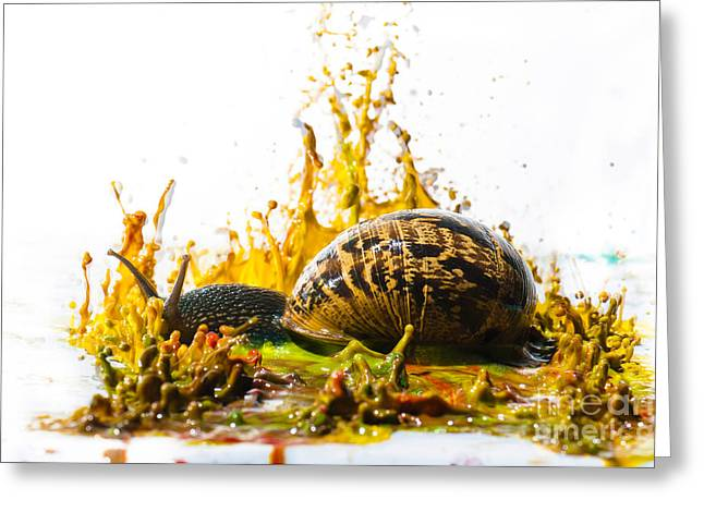 Fluorescent Yellow Greeting Cards - Paint Sculpture and snail  Greeting Card by Guy Viner