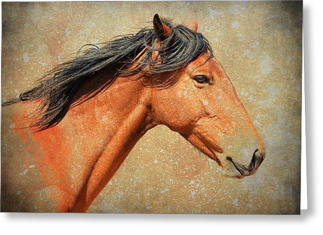 Horse In Water Paint Greeting Cards - Painted Greeting Card by Steve McKinzie