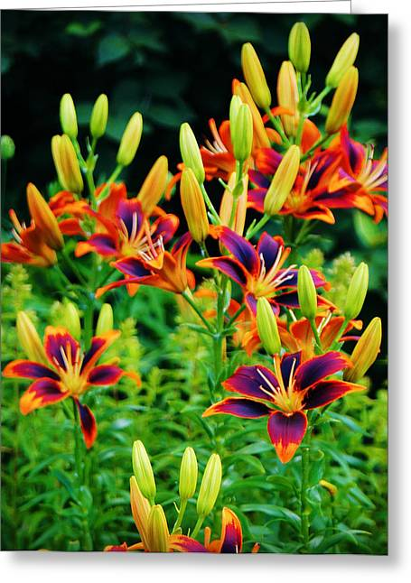 City Scapes Framed Prints Greeting Cards - Paintbox Lillies Greeting Card by Carol Toepke
