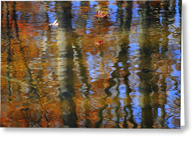 Willow Lake Greeting Cards - Painted By God Part Two Greeting Card by Frozen in Time Fine Art Photography