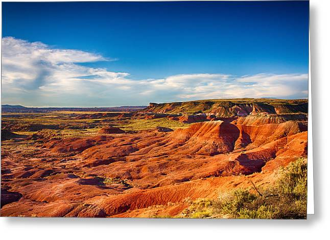 Southwest Greeting Cards - Painted Desert Greeting Card by Fred Larson