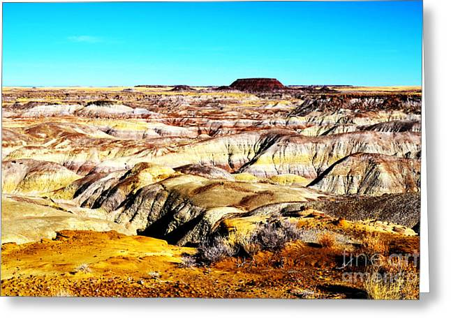 Petrified Forest Greeting Cards - Painted Desert in Petrified Forest National Park Vivid Greeting Card by Shawn O