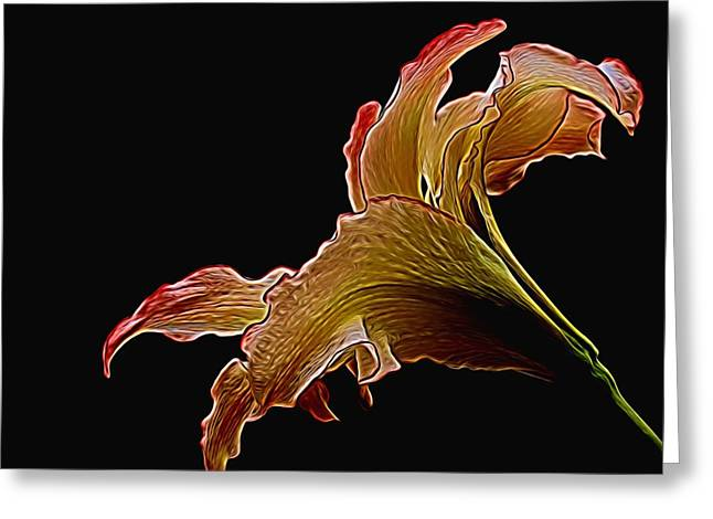 Creative Manipulation Digital Greeting Cards - Painted Lily Greeting Card by Judy Vincent