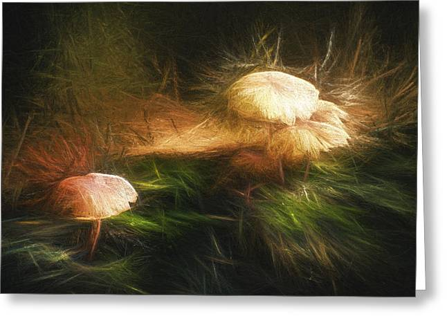 Fungi Greeting Cards - Painted Magic Mushrooms Greeting Card by Scott Norris