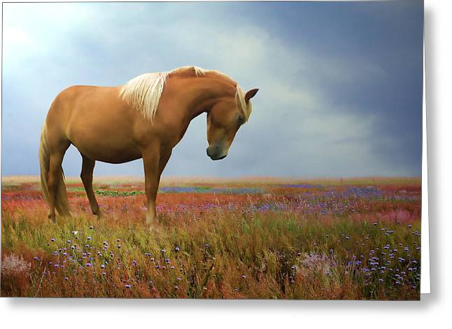 Horse In Field Greeting Cards - Painted Pastures Greeting Card by Sharon Lisa Clarke