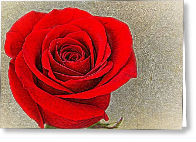 Decorate Greeting Cards - Painted Rose Greeting Card by Judy Vincent