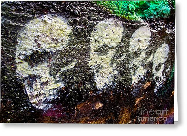 Fearlessness Greeting Cards - Painted Skulls Greeting Card by Kelly Holm