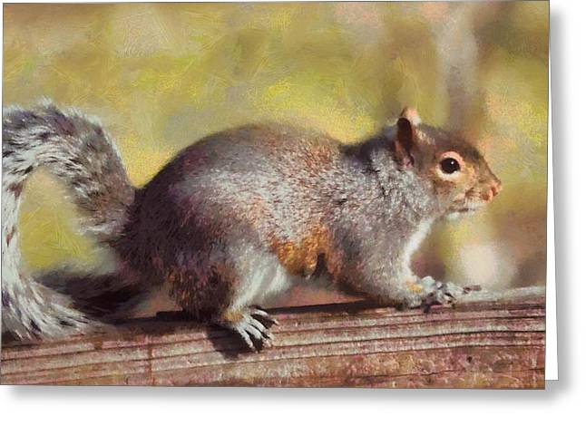 Cute Mixed Media Greeting Cards - Painted Squirrel In Autumn Greeting Card by Dan Sproul