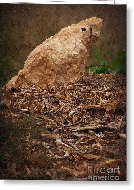 Owner Digital Greeting Cards - Painted Stone Bird Greeting Card by Michael Braham