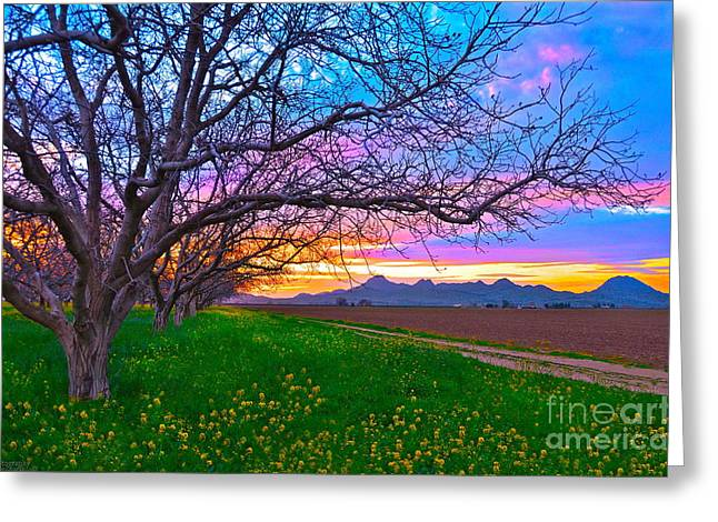 Colusa Greeting Cards - Painted Sutter Buttes Skies Greeting Card by Michelle Zearfoss
