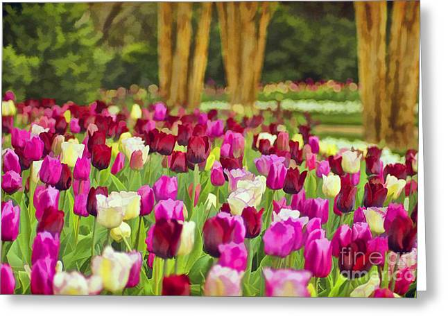 Mother Gift Greeting Cards - Painted Tulips Greeting Card by Darren Fisher