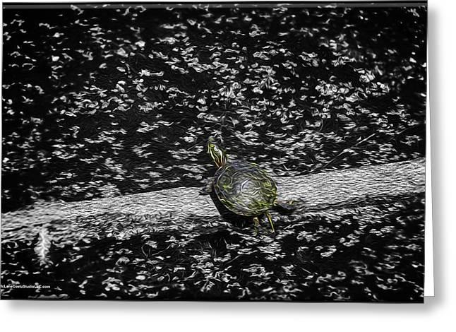Painted Turtle In A Monochrome World Greeting Card by LeeAnn McLaneGoetz McLaneGoetzStudioLLCcom