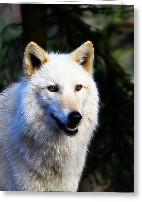 Preditor Greeting Cards - Painted White Wolf Greeting Card by Steve McKinzie