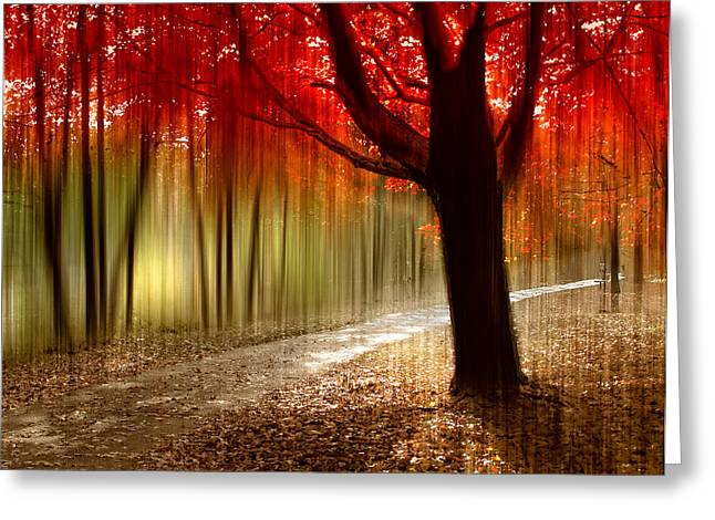 Trail Digital Greeting Cards - Painted With Light Greeting Card by Jessica Jenney