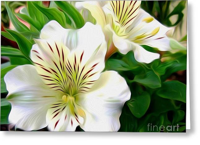 Peruvian Lily Greeting Cards - Painterly Alstroemeria Greeting Card by Kaye Menner