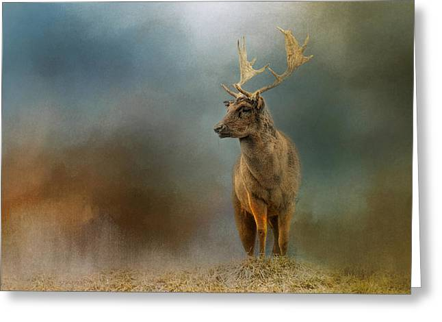 Painterly Fallow Buck Greeting Card by Jai Johnson