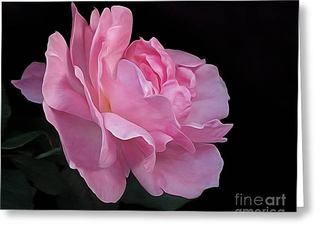 Painterly Pink Rose On Black Greeting Card by Kaye Menner
