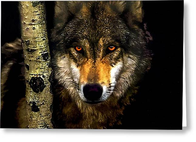 Guard Dog Greeting Cards - Painting ... Wolf in Aspen Grove Greeting Card by  Bob and Nadine Johnston