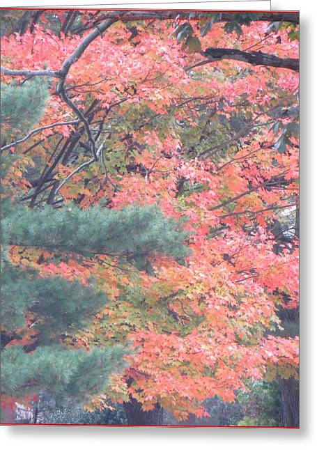 Acrylicprint Greeting Cards - Painting autumn Greeting Card by Sonali Gangane