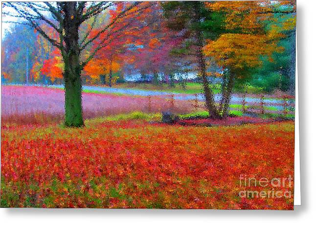 Painting Like Frontyard In Autumn Greeting Card by Tina M Wenger