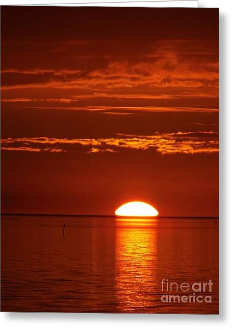 Cedar Key Greeting Cards - Painting The Sky Red Greeting Card by D Hackett