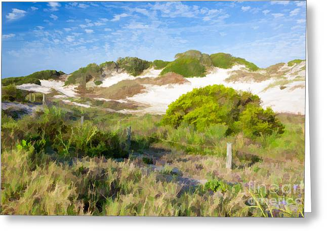 Recently Sold -  - First-lady Greeting Cards - Paintography of NaNa Dunes American Beach Florida Greeting Card by Dawna  Moore Photography