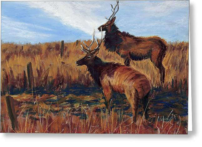 National Pastels Greeting Cards - Pair o Bulls Greeting Card by Mary Benke