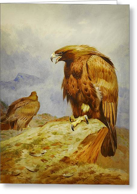 Drawing Of Eagle Greeting Cards - Pair of Golden Eagles Greeting Card by Celestial Images