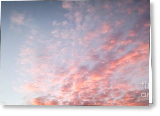 Canvas Floral Greeting Cards - Pale Blue Sunset Greeting Card by Holly Martin