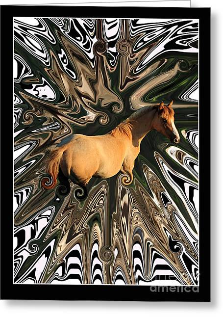 Aidan Moran Photography Greeting Cards - Pale Horse Greeting Card by Aidan Moran