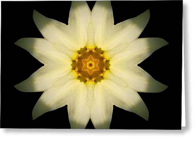 Pale Yellow Daffodil Flower Mandala Greeting Card by David J Bookbinder