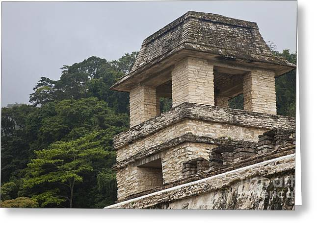 Ancient Ruins Greeting Cards - Palenque, Mexico Greeting Card by Ellen Thane