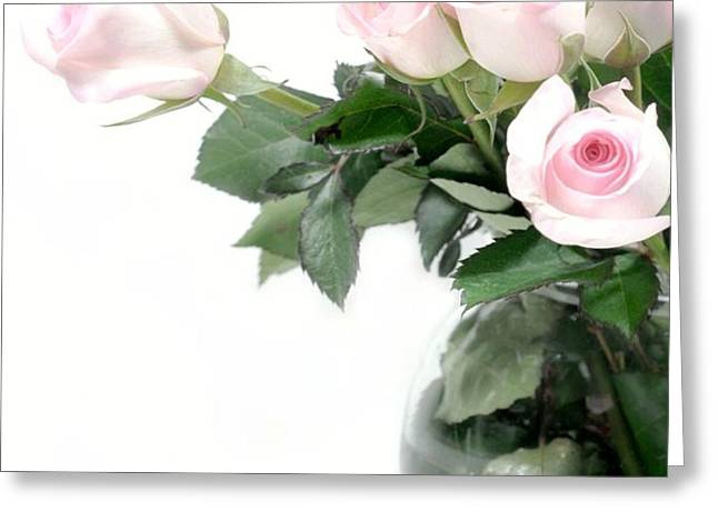 Paler Side of Pink Greeting Card by Diana Angstadt