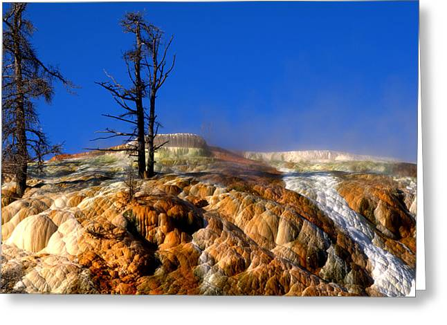 Mammoth Terrace Greeting Cards - Palette Spring Steam Greeting Card by Brian Harig