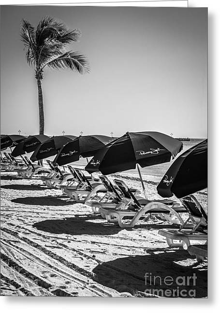 Liberal Greeting Cards - Palm and Beach Umbrellas - Higgs Beach - Key West - Black and White Greeting Card by Ian Monk