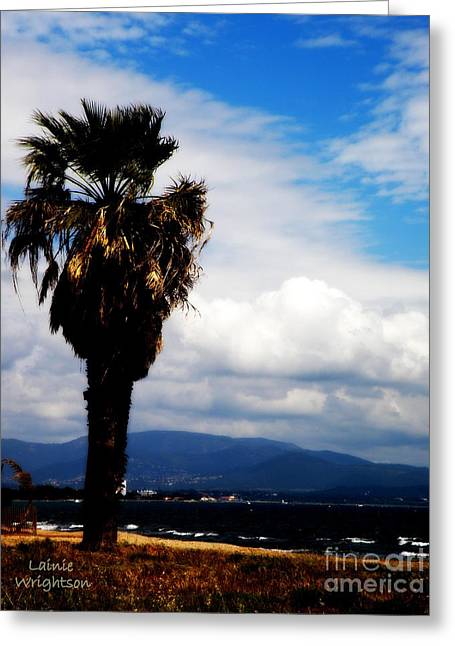 Lainie Wrightson Greeting Cards - Palm at Seaside Provence Greeting Card by Lainie Wrightson