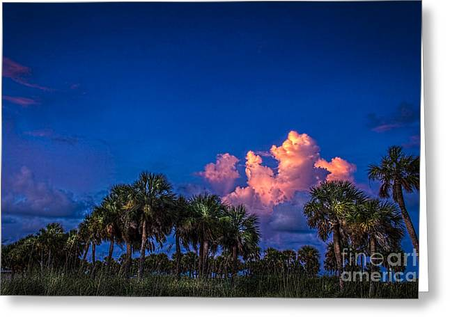 Thunder Cloud Greeting Cards - Palm Clouds Greeting Card by Marvin Spates